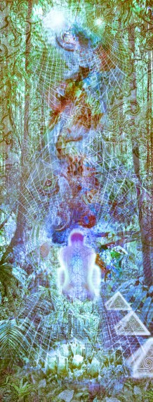 A Forested Jungle Vibrational Light Crystal Meditation Experience